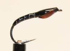 Nymphe Nr. 111 - Schwarz-Silber-Braun